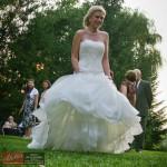 trupa-nunta-corbeanca-club-cortina-IMG_6306