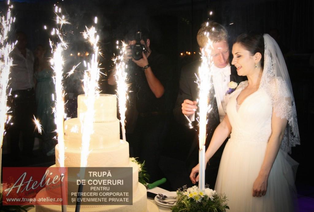Formatie nunta Pitesti - Conacul Bratienilor