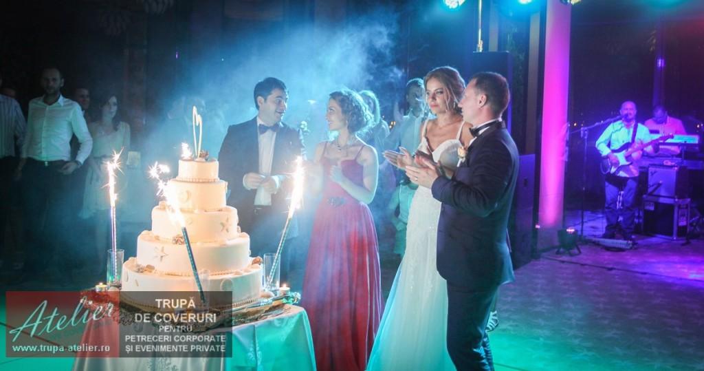 Formație nuntă Tulcea