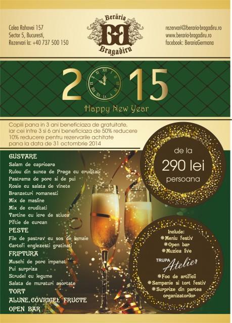 revelion-2015-trupa-live-beraria-bragadiru