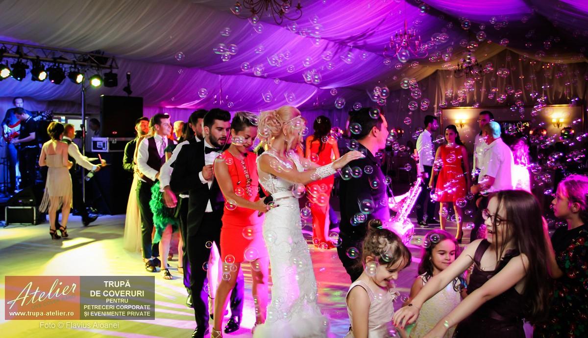 trupa-nunta-Pro Marriage Park, Rm Valcea IMG_9315